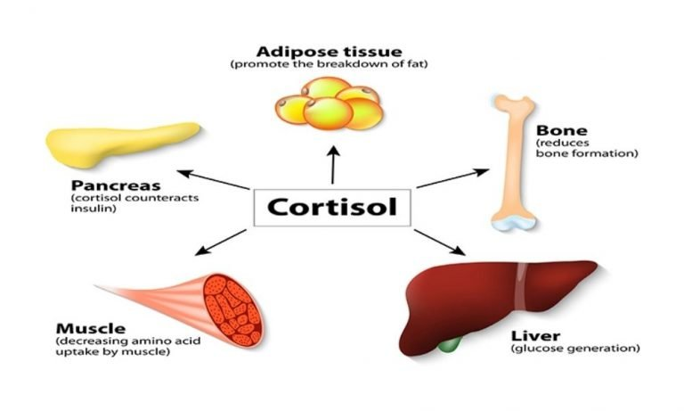 How To Lower Cortisol Naturally
